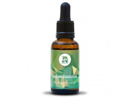 oil Hallormsstaðaskógur1